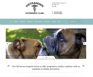 Ostrander Veterinary Clinic